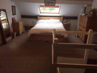 Large Attic Room in Heeley - Short Term Dec , Jan and Feb