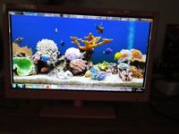 """PINK TV LCD HDMI FREEVIEW ALBA 22"""""""