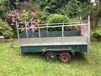 8x4 trailer with sides