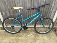 Ladies cheap mountain bike ideal for student
