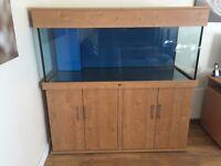Custom Built 5 x 2 x 2 Oak Aquarium