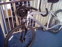 Mens Diamondback mountain bike 17.5 frame