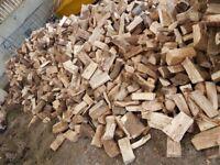 Firewood, hardwood logs well seasoned and ready to burn