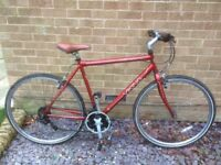 Adult bicycles for sale ideal for students