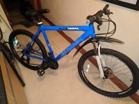 Blue Bronx thunder aluminium bike
