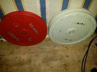 Eleiko Olympic Weights Technique Plates