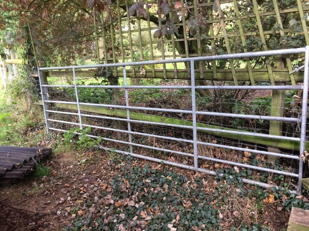 12' Galvanised Field Gate in vgc