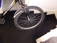 Land Rover mountain bike.