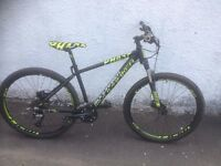 Phase Mondraker. Men's Mountain Bike. Fully serviced, fully safe and ready to go.