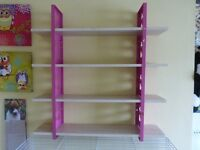 Amazing Wall Big Shelf for Toys Books