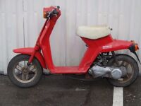 Classic 1983 HONDA NP 50 D MINI MOLODY 50cc Moped Scooter Project
