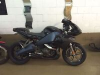 2008 Buell 1125R -
