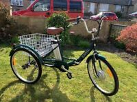 Jorvik Electric folding step through trike (tricycle).