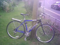 Trek 7300 FX Hybrid Bike bicycle - Excellent condition, like new