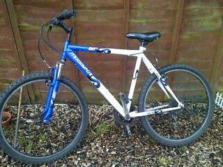 gents mudfox mountain bike