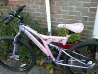 Nice looking lady's mountain bike