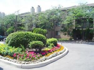 One Bedroom Apartments Aquitaine Avenue for Rent - 2700...