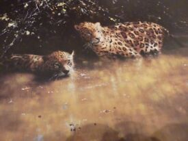 JAGUARS - David Shepherd signed limited edition print, limited to 1500 copies.