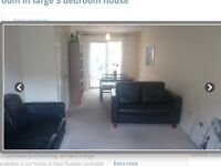 Large double bedroom to rent in east dulwich