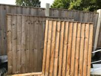 Garden Fences & Gate
