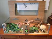 Vivexotic Repti-view vivarium and accessories