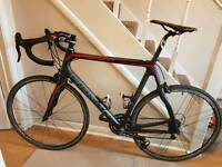 Road Bike- Pinarello Carbon (Large)