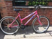 Pink bike good condition just my needs a little tlc as not been used in a while