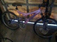 Womens / Girls Mountain Bike