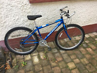 Raleigh Manta Ray Child's Mountain Bike Ages 10-14