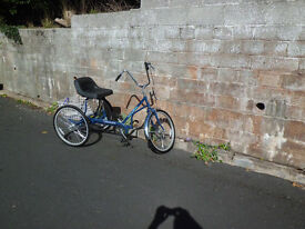 Adult/teen tricycle