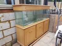 5 ft Aquarium / fish tank & Cabinet