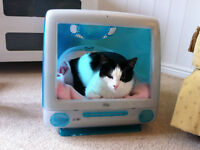 Novelty Cat Bed - Apple iMac G3 Case