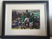 Signed and Framed Northern Ireland Picture