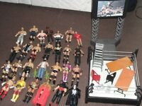 Wrestling figures collection which includes ring and accessories