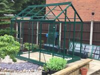 Rhino classic 6x8 greenhouse - colour Tuscan Olive