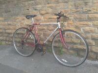 Raleigh Spirit Pioneer Reynolds 501 Hybrid Road Bike