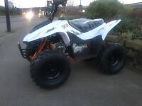 KAYO FOX 70CC QUAD BIKE FULLY AUTO (BRAND NEW)
