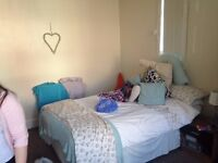 1 Large Double Bedroom Avaliable in House Share with 5 Other Students