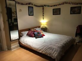 Large double room in friendly house share