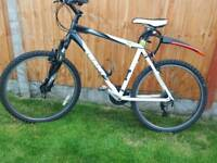 "GIANT 21"" Mountain bike"