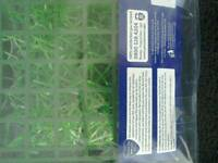 Aquatic grass mat
