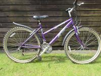 Girls or Ladies Raleigh Vixen bicycle