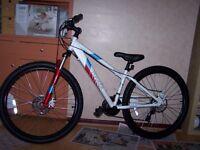 Apollo Paradox Ladies mountain bike