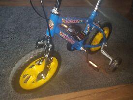 12inch raleigh boys bike