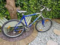 Schwinn mesa gs mountain bike