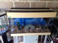 200l fish tank 3.5 ft full set up with stand filter heater 2 light gravel ornament all work in pic