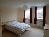 1 Large Double Room £400pcm / 1 Small Double Room £385pcm