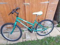 Ladies / Teenagers Apollo Mountain Bicycle