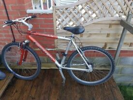 Carrera Bicycle in very good working condition