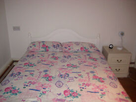BRIGHT SPACIOUS DOUBLE ROOM FOR RENT IN LOVELY VICTORIAN HOUSE